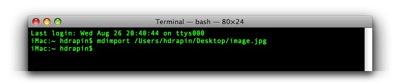 Terminal — bash — 80×24-1.jpg